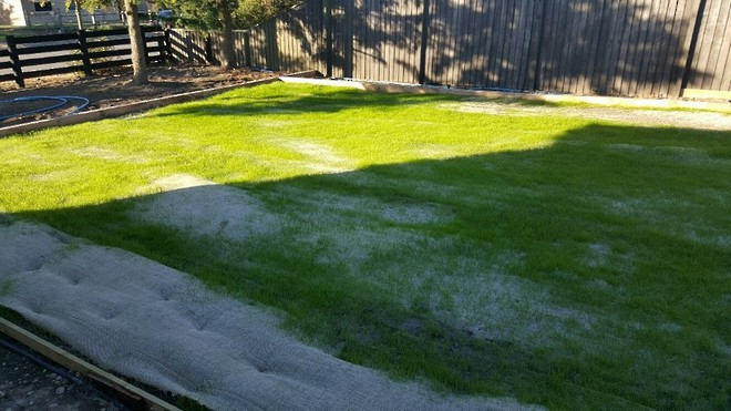 Hessian Grass Strike Mesh image 0