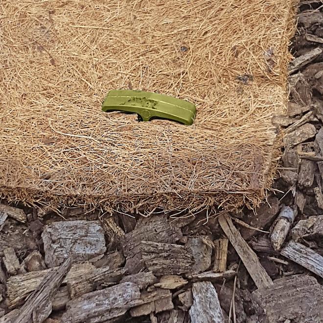 GreenStake Pins (100% Natural - Biodegradable) image 2
