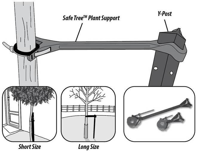 SafeTree Plant Support (Heavy Duty) image 1