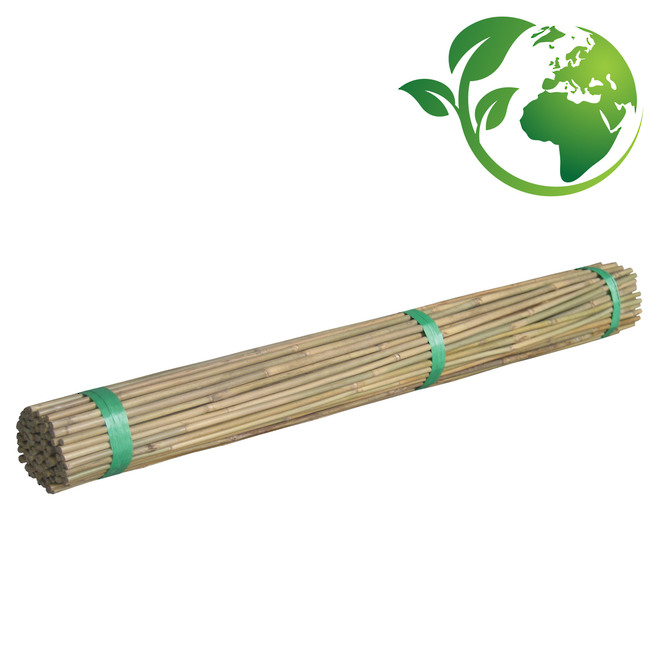 Bamboo Canes 500-2400mm length image 0