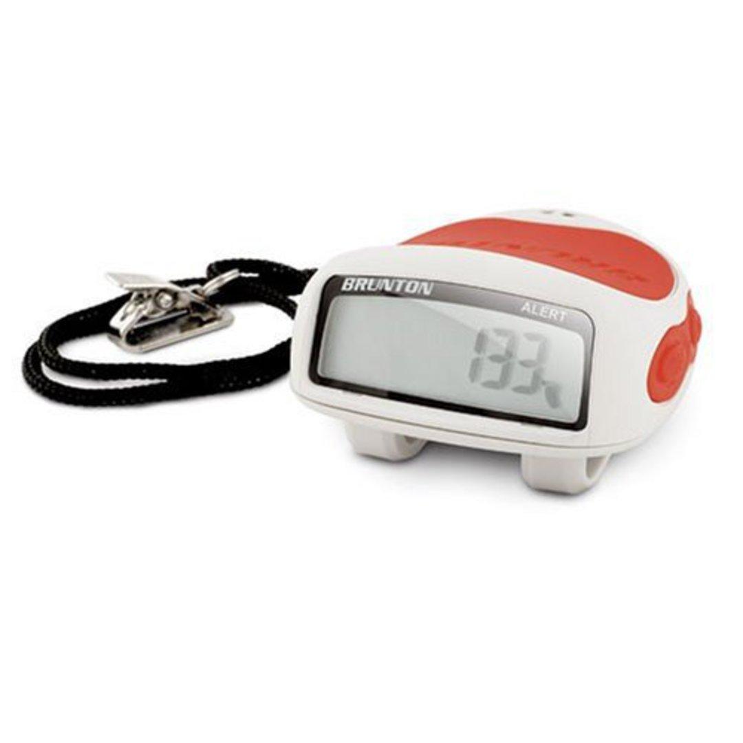 GIFTZONE - Brunton Ped with Panic alarm $5!!! image 0