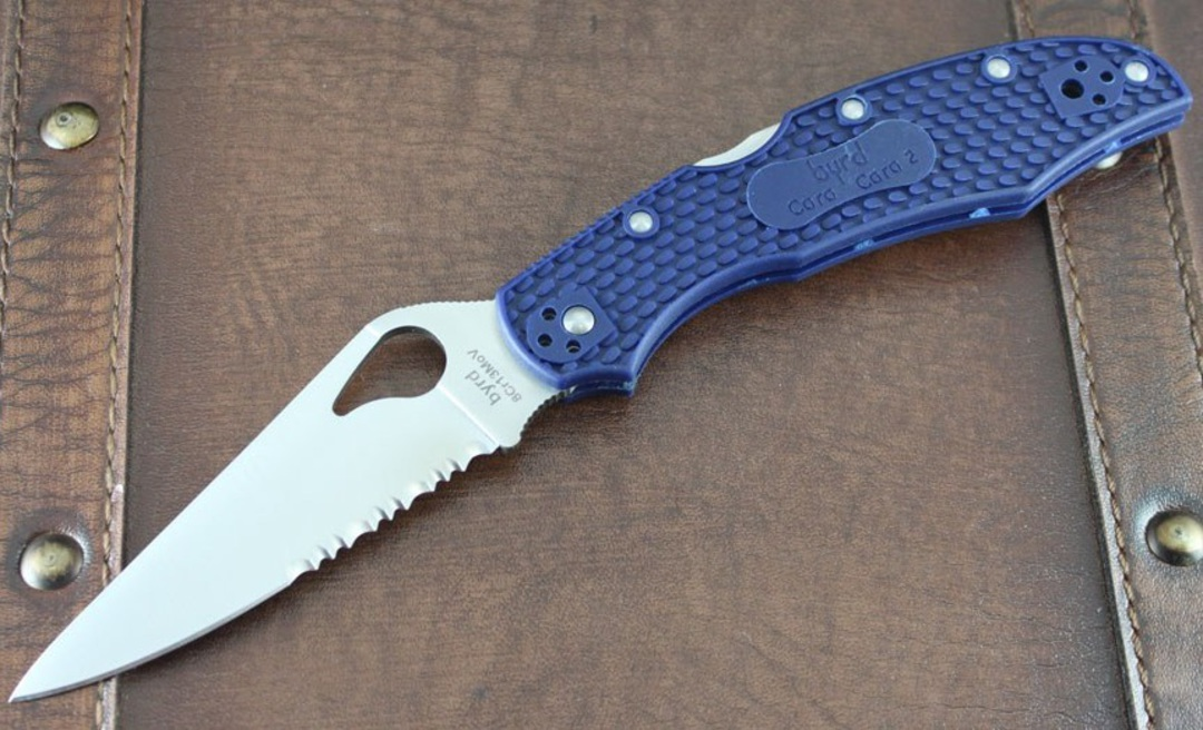 BYRD Cara Cara 2 Folding Knife By Spyderco - Blue Combo Edge image 0