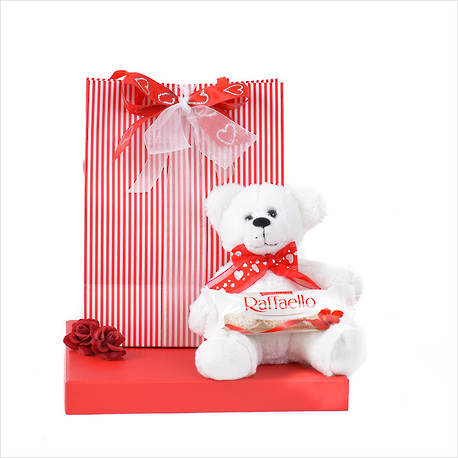 A Bear in a Bag Gift image 0