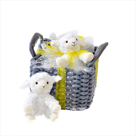 A Star is Born Baby Gift Basket image 0