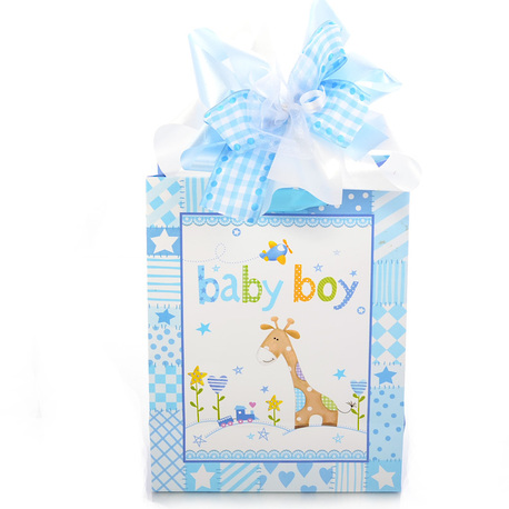 Little Wraps Baby Boy Gift image 0