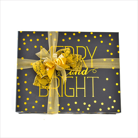 Merry and Bright Christmas Gift Box image 0