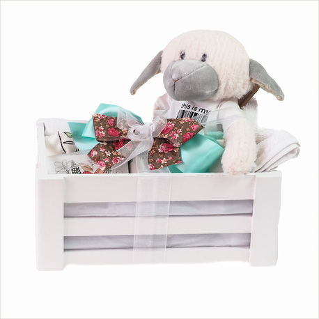 A Kiwi Baby Gift Crate image 0