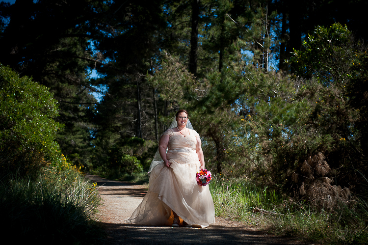 wedding portraits bride groom couple nelson new zealand nz sandra johnson boutique photography