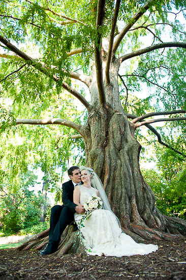wedding portraits bride groom couple nelson new zealand nz sandra johnson boutique photography love romance queens gardens nelson