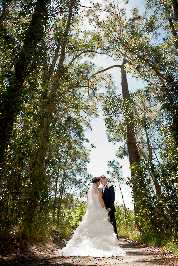 wedding portraits bride groom couple nelson new zealand nz sandra johnson boutique photography love romance trees hoddy park