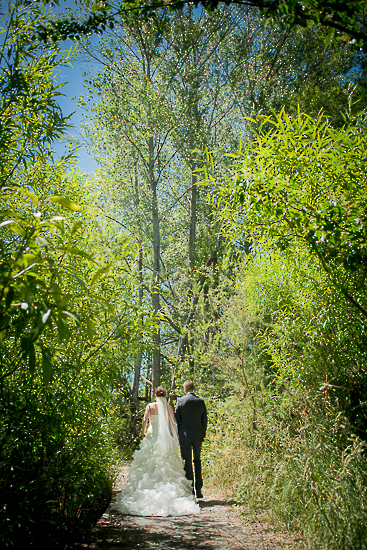 wedding portraits bride groom couple nelson new zealand nz sandra johnson boutique photography love romance hoddy park trees