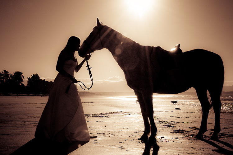 bride and groom love wedding romance glamour nelson nz horse bride beach silhouette