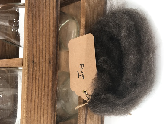 Single Sheep Carded Wool Release - Iris (300 Gram Bags) image 0