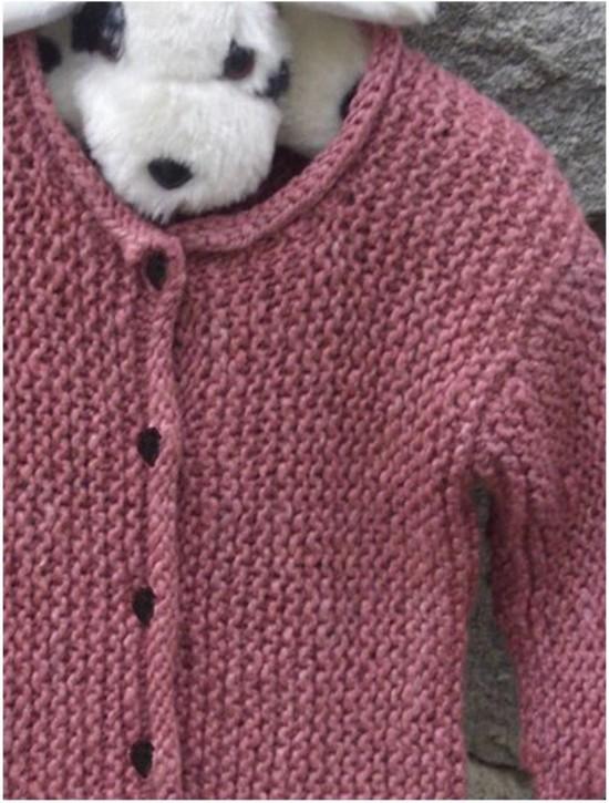 Baby Garter Stitch Pullover and Cardi Hemp Knitting Pattern - Children image 1