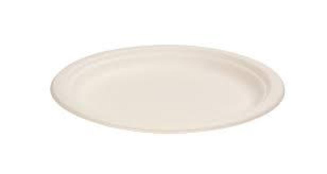 Plates ROUND Sugar Cane Dinner 230mm (50) (B) image 0