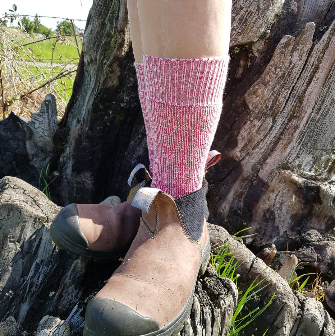 My Work Socks - Pink & Purple - shoe size 4-9 only. image 0