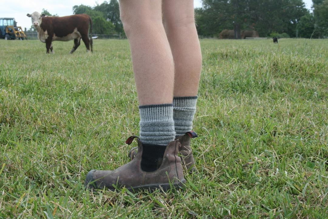 Merino Work Socks image 2