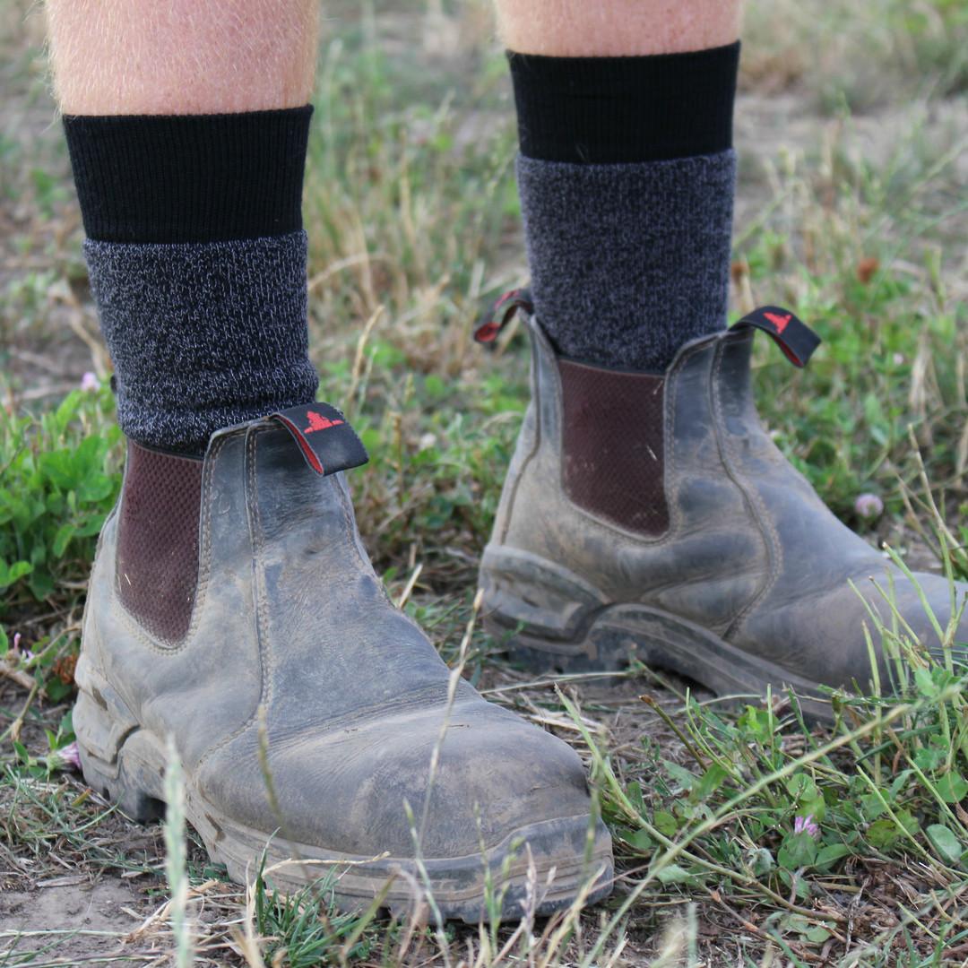 Tramping / Work Merino Wool Socks - Unisex image 0
