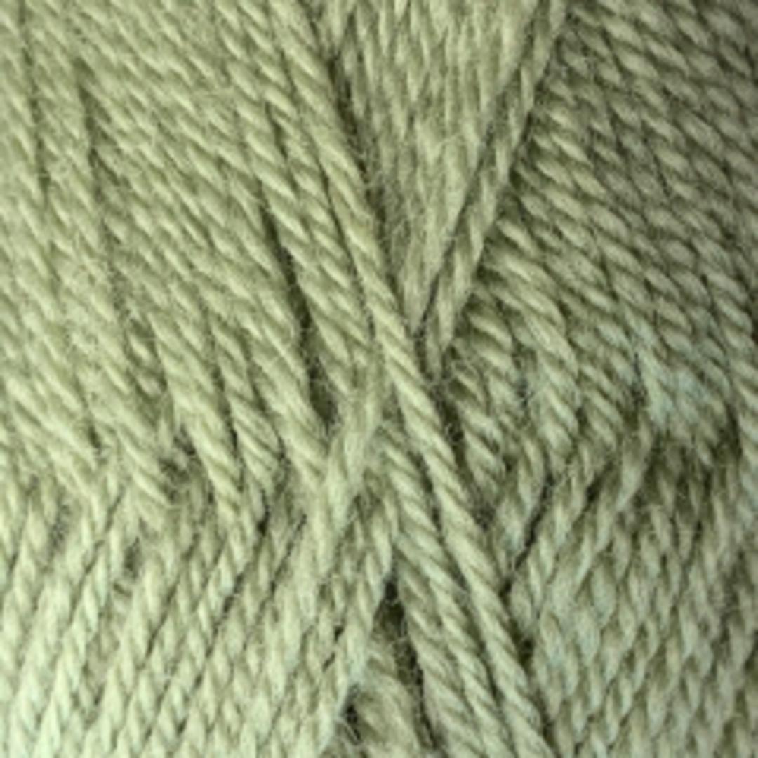 Crucci Ferndale: Pure 100%  NZ Wool 8 Ply Yarn - Soft Green image 0