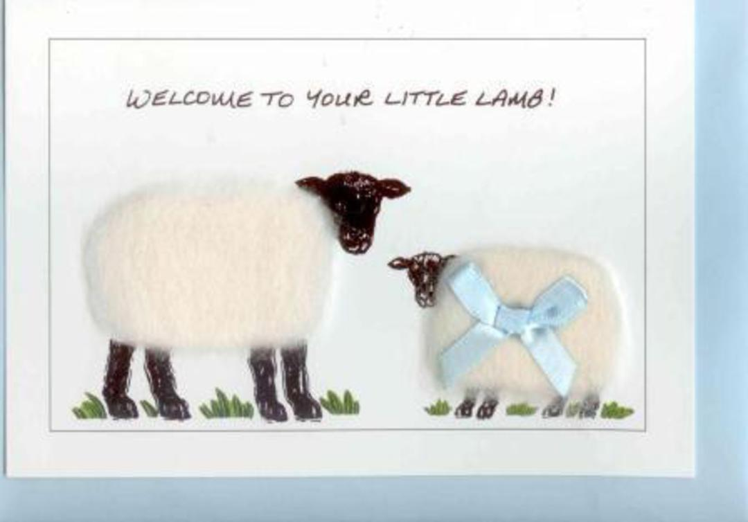 Welcome To Your Little Lamb Gift Card - Boy image 0
