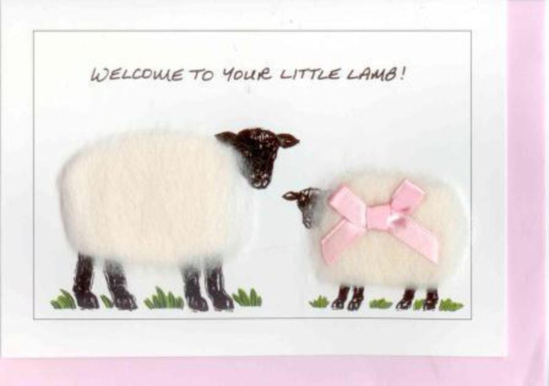 Welcome To Your Little Lamb Gift Card - Girl image 0