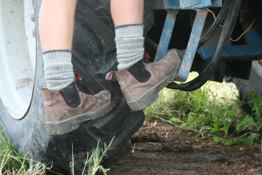 Merino Work Socks image 3