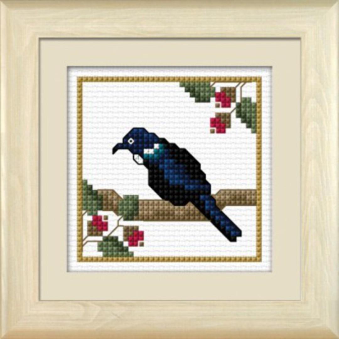 NZ Birds - Tui image 0