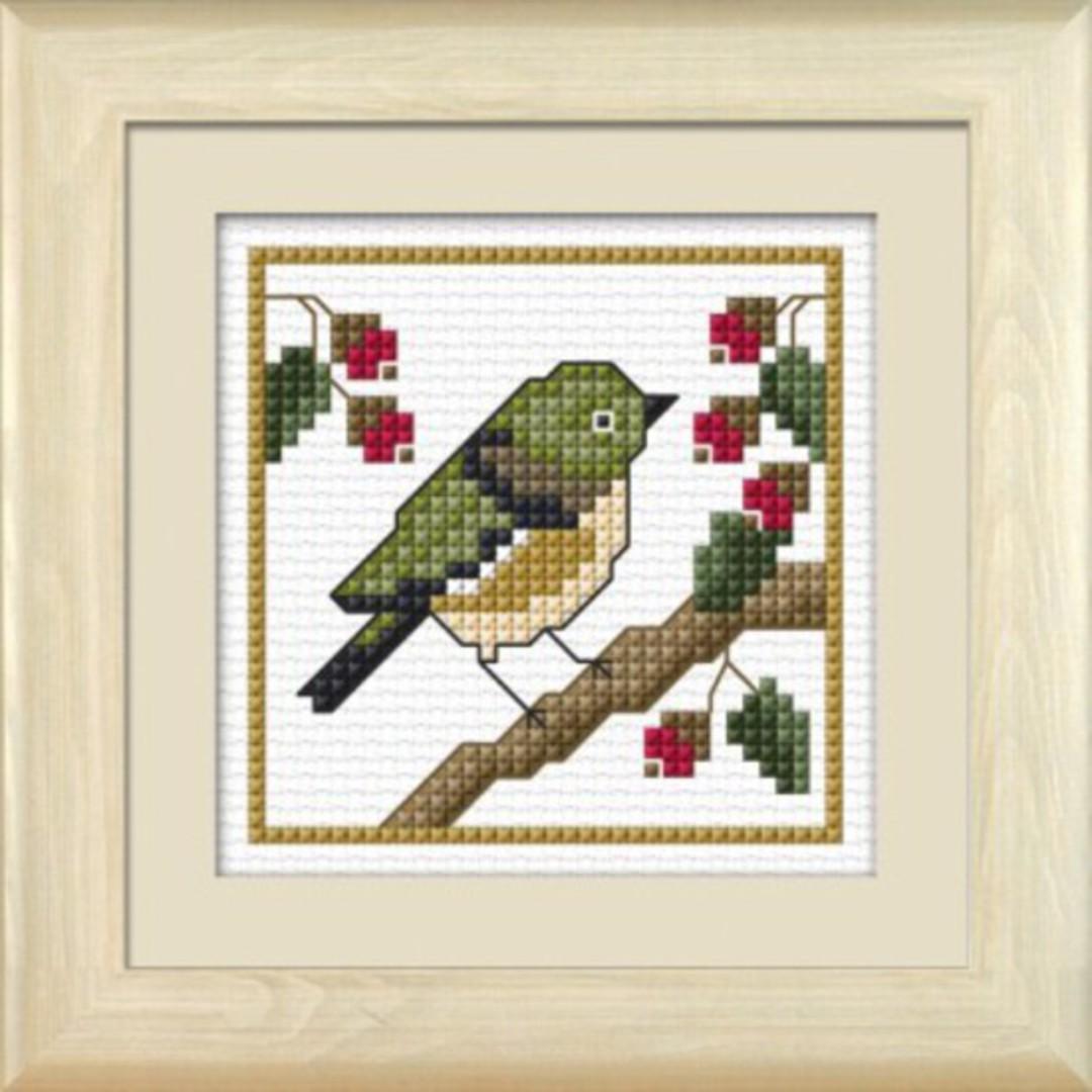NZ Birds - Tauhou image 0