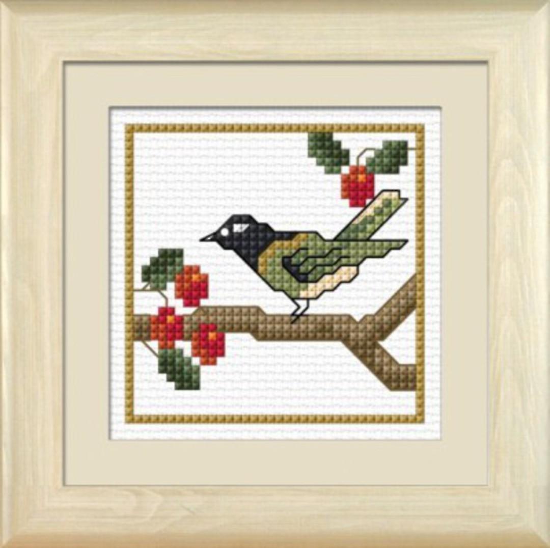 NZ Birds - Hihi image 0