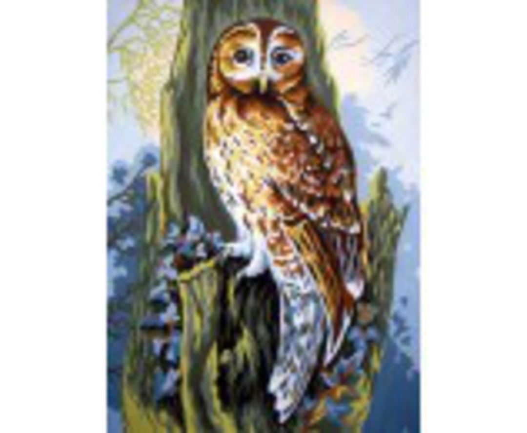 Tapestry Canvas Owl image 0