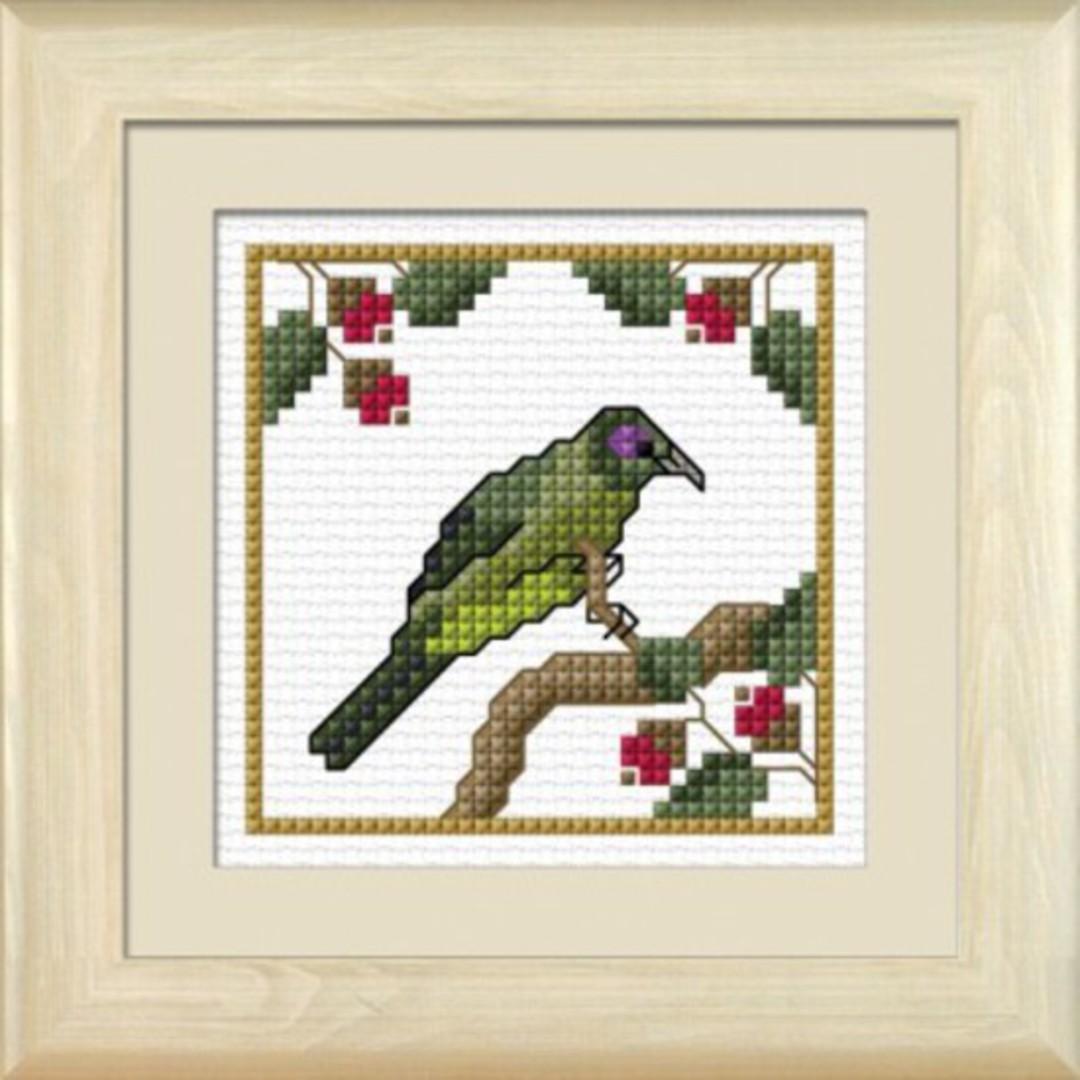 NZ Birds - Korimako image 0