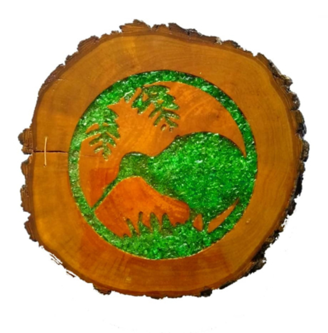 Pōhutukawa Kiwi in Circle image 0
