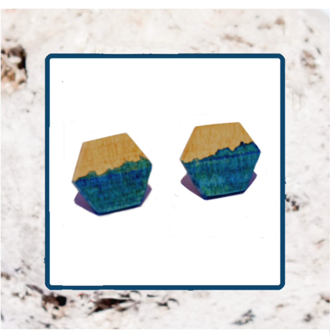 Macrocarpa Hexagonal Earrings image 2