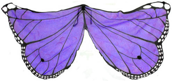 Butterfly Wings purple image 0