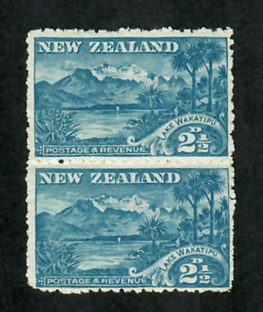 NEW ZEALAND 1898 Pictorial 2½d Wakatipu. Second local issue. Cowan paper. Perf 11. Nice vertical pair. - 74840 - UHM image 0