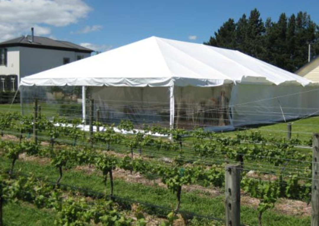 10x20m Clipframe Marquee image 4