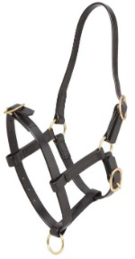 Zilco Foal Halter-Synthetic image 0