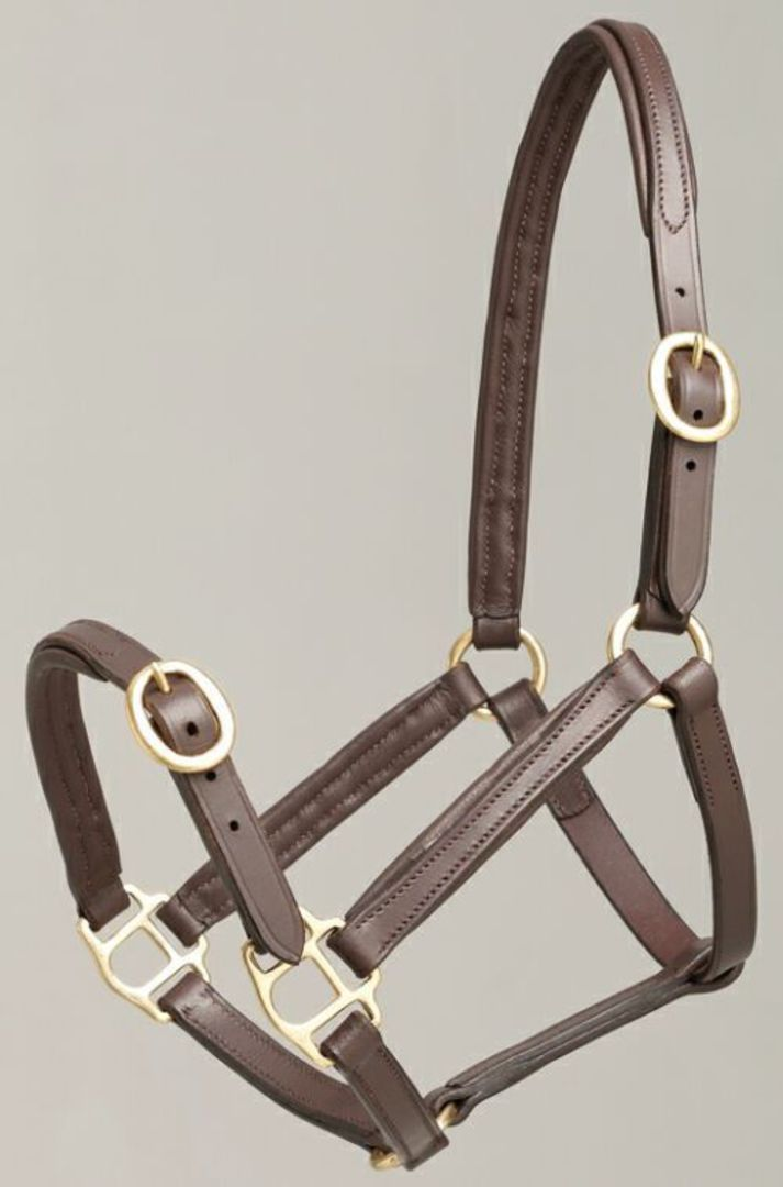 Aintree Foal Leather Halter image 0