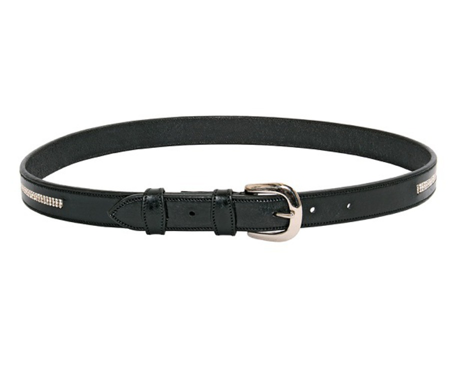 Wild with Flair Diamante Belt image 0