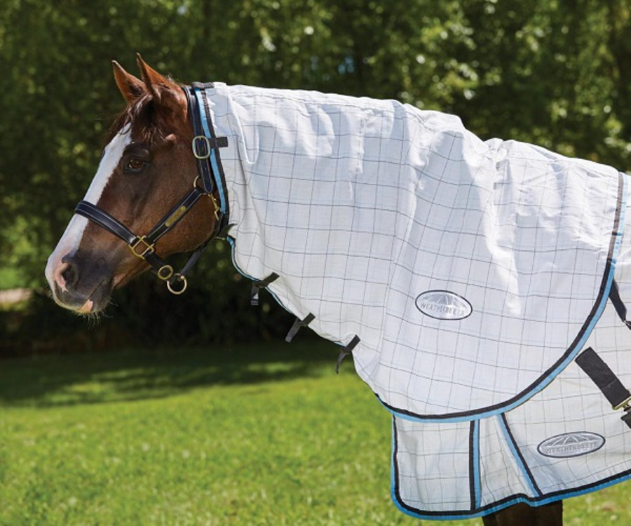 Weatherbeeta Summer Sheet Cotton Neck Rug image 0