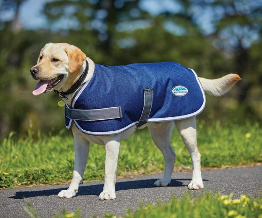 Weatherbeeta Comfitec Parka 1200 Dog Rug image 2