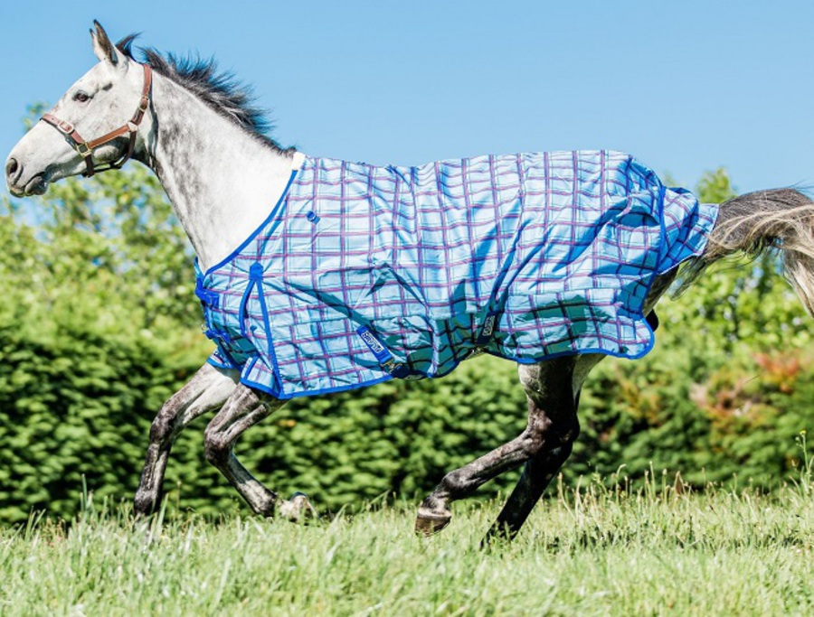 Flair Wanaka Turnout Rug - 100gm Fill image 0