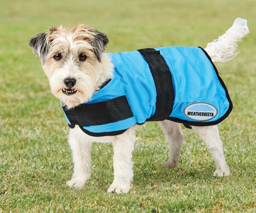 Weatherbeeta Therapy-Tec Cooling Dog Coat image 1