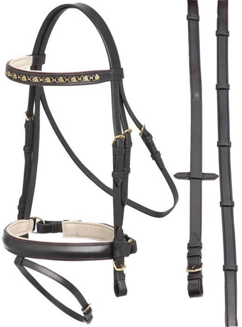 Aintree Pirouette Bridle image 0