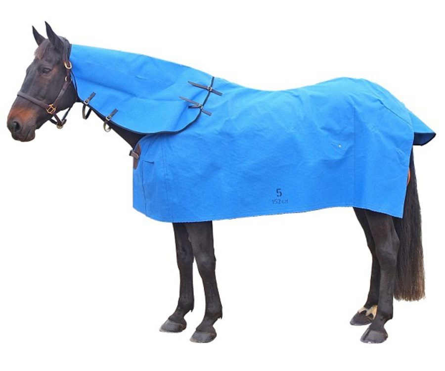 Forbes Stable Star Canvas Rug image 1