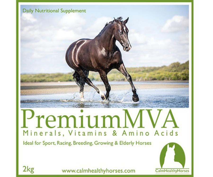 Calm Healthy Horses - Premium MVA image 0