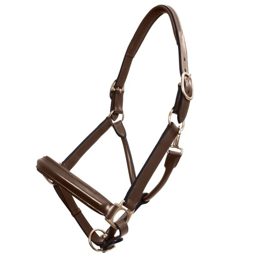 Platinum Leather Show Halter image 1