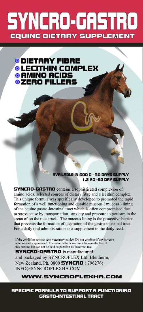 Syncro-Gastro image 1
