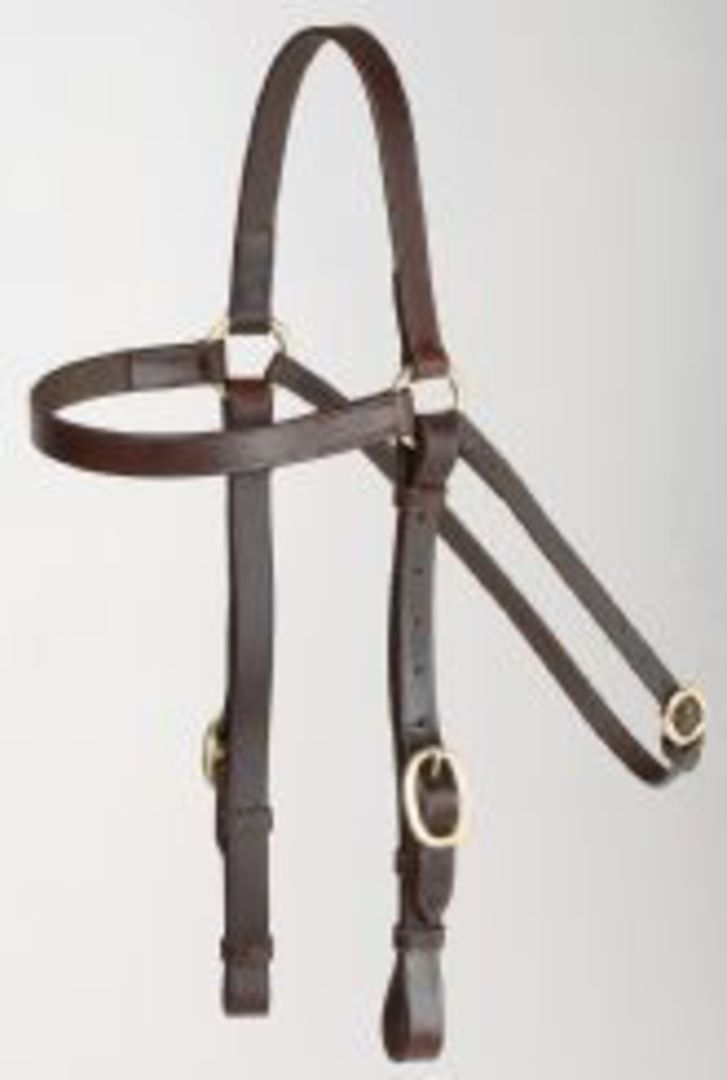 Aintree Barcoo Bridle 20mm +Reins image 0