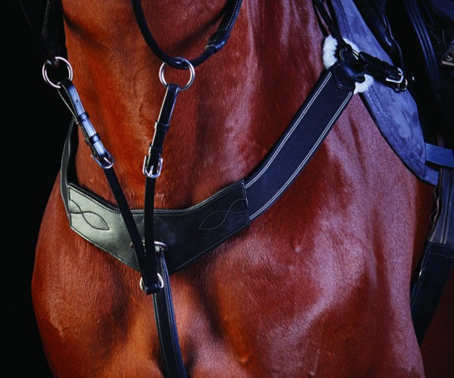 Collegiate Three Point Breastplate image 0